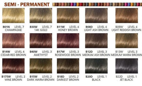 Clairol Beautiful Collection Semi-Permanent Color Shades