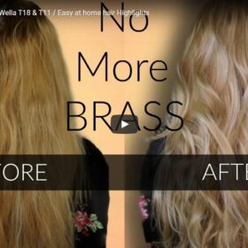 Toning Brassy Hair With Wella T18 & T11 At Home